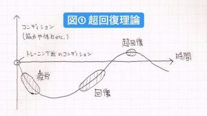 超回復理論の図
