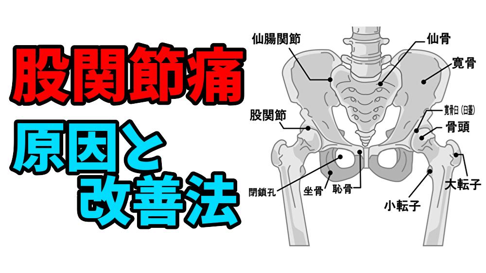股関節痛と変形性股関節症