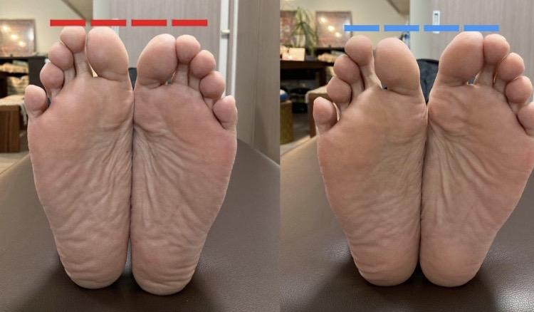 足のサイズの違い